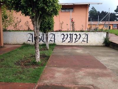 Agua Viva School